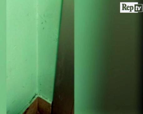 L'ospedale invaso dalle formiche, il paziente filma tutto e poi muore