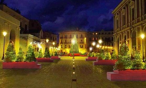 Bari, Piazza Ferrarese sarà un bosco di Natale, con sei file di alberi e un grande abete illuminato al centro, l'inaugurazione il giorno di San Nicola