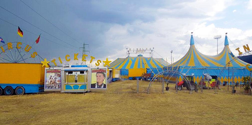 Puglia, maxi rissa al circo Orfei, domatore delle tigri aggredito e poi picchiato da un gruppo di spettatori, quattro i feriti