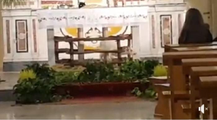 Puglia, agnellino di Pasqua legato per ore vicino all'altare. Il suo pianto ha commosso tutti
