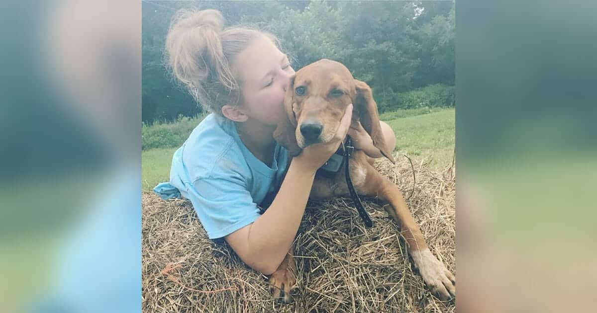 12enne vede il suo piccolo cane scappare lo rincorre, travolti e uccisi da un'auto