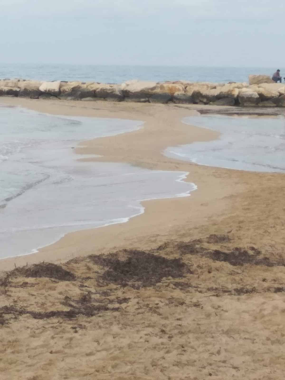 Bari fenomeno raro, il mare si ritrae a Pane e Pomodoro, limbo di sabbia congiunge la terraferma ai frangiflutti