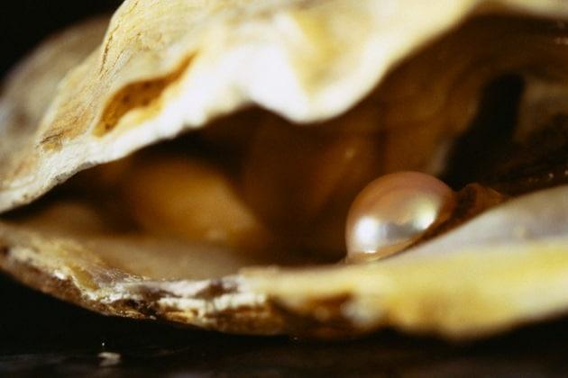 Ordina in un noto ristorante un piatto di ostriche e trova una perla dal valore inestimabile
