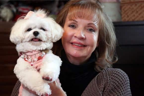 Donna facoltosa lascia in eredità tutto al suo amato cane perché deve vivere nel lusso sfrenato! Ai suoi figli però non lascia un centesimo