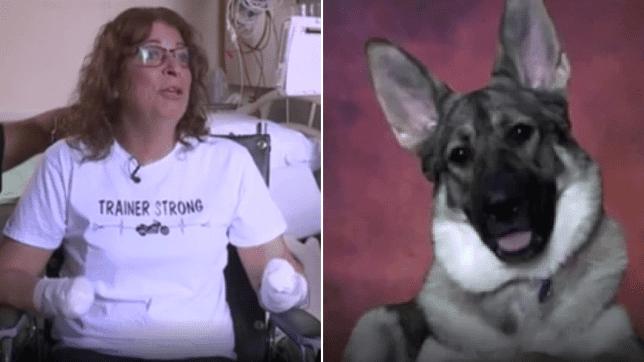 Donna gioca con il suo cane e dopo che  le lecca il braccio, va in coma e deve amputare mani e piedi per salvarsi