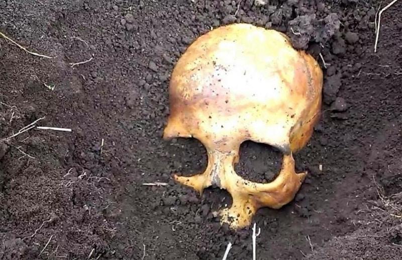 Trova uno scheletro nel giardino di casa, la moglie gli dice di non preoccuparsi è il suo primo marito