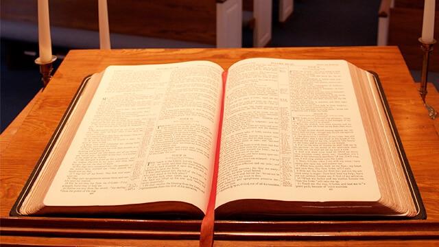 Il cane mangia la Bibbia e lei gli fa una cosa atroce