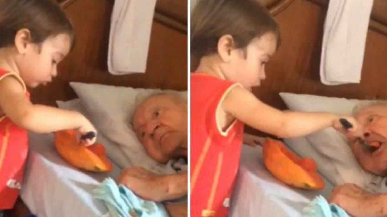 Bambino molto piccolo imbocca il nonno, i video che vorremmo sempre condividere