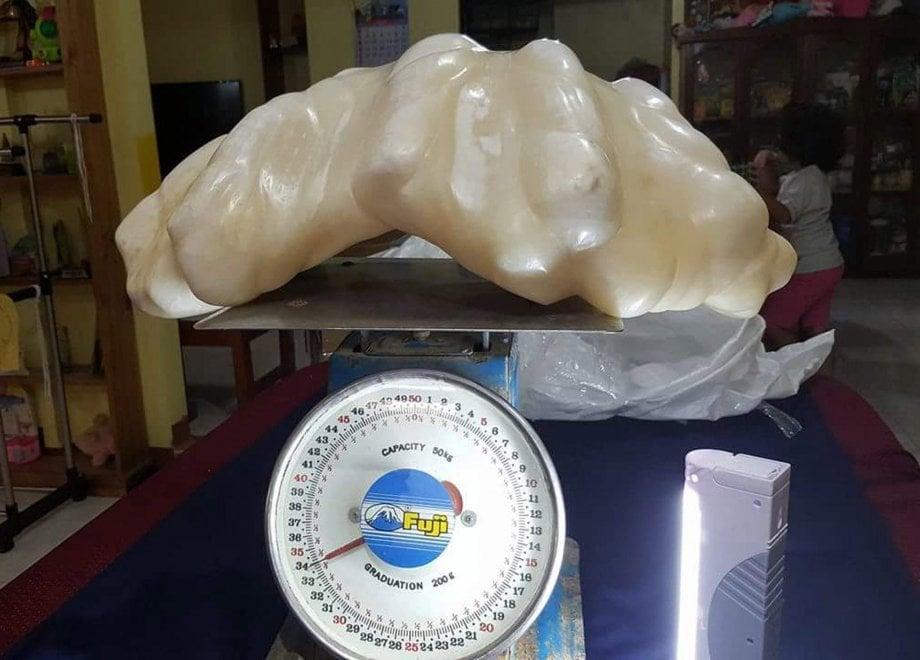 Un uomo è andato a pescare e ha tirato su una perla di 34 kg