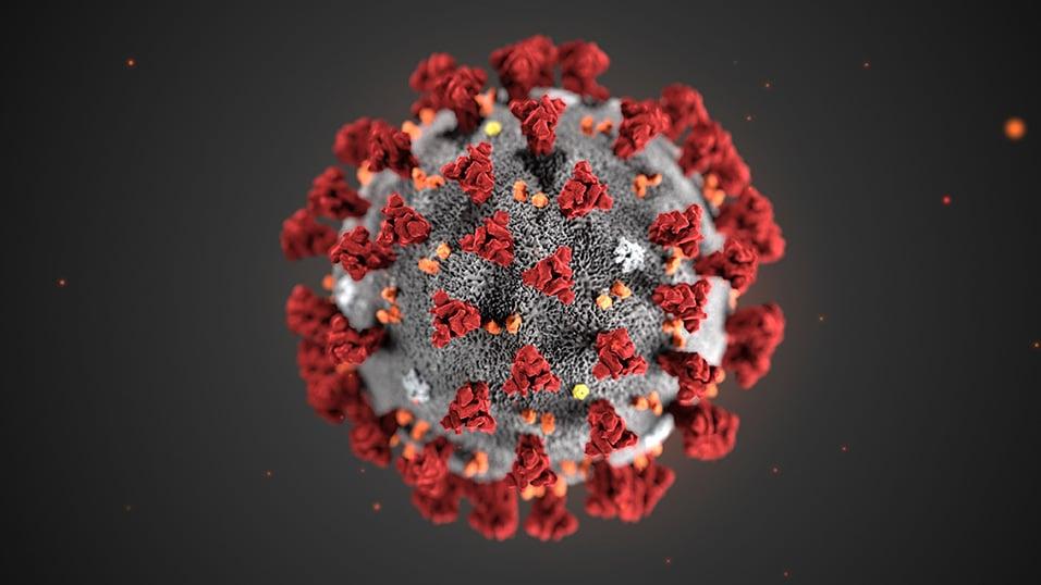 """Coronavirus, noto epidemiologo """"Tutti gli ospedali italiani si devono preparare, sul primo contagio esistono ancora molte cose non chiare"""""""