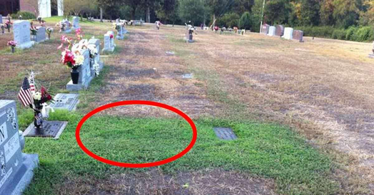 La tomba del figlio dopo sei anni dalla morte era misteriosamente diventata  verde, i genitori scoprono il perchè e rimangono albiti