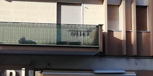 Choc a Trani, pipistrelli stesi al sole ad essiccare, intervengono le forze dell'ordine