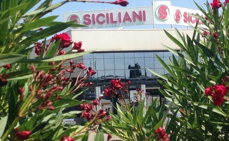 Coronavirus, la Siciliani Spa dirama un importante comunicato stampa
