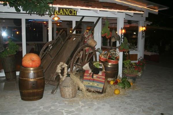 Bitritto, in fiamme nella notte il ristorante Ranch, danni gravi alla struttura, indagano i Carabinieri