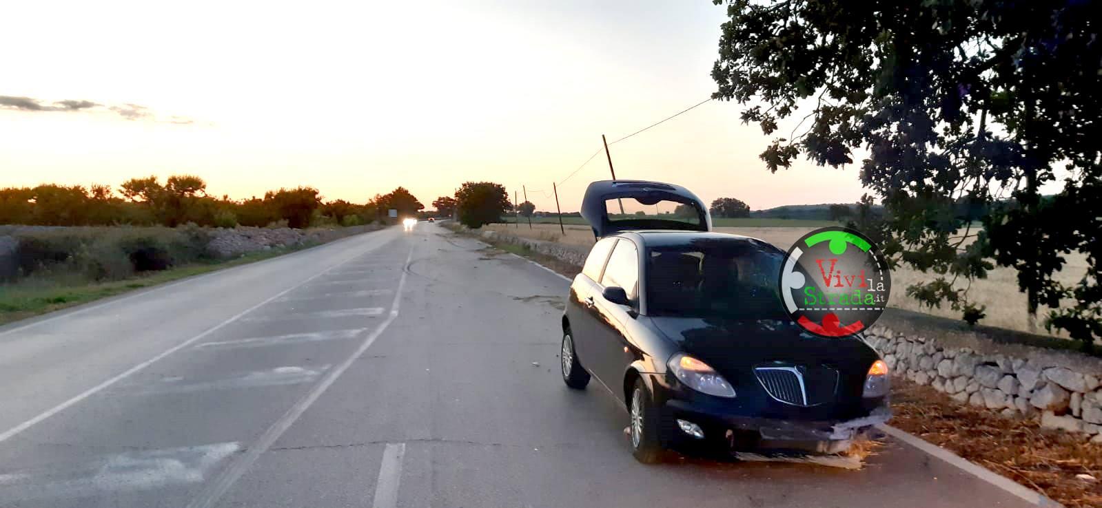 Provincia di Bari, donna ha colpo di sonno e finisce fuori strada, si ferisce gravemente al volto per un ramo di quercia