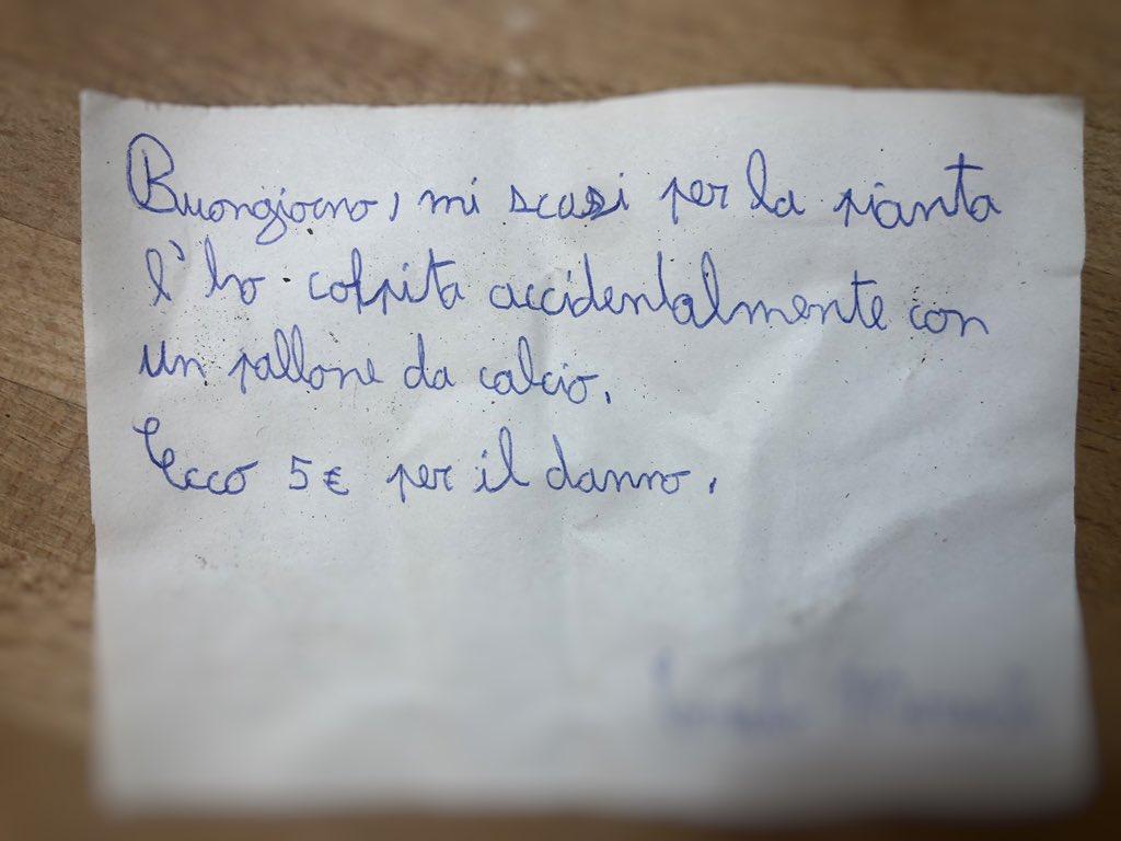 11enne gioca a pallone e rompe la pianta del vicino, mette vicino lettera di scuse firmata e cinque euro